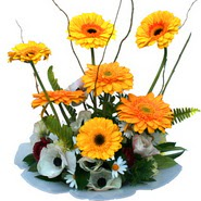 camda gerbera ve mis kokulu kir çiçekleri  Elazığ çiçek servisi , çiçekçi adresleri