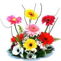 Elazığ yurtiçi ve yurtdışı çiçek siparişi  camda gerbera ve mis kokulu kir çiçekleri