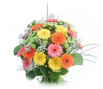 13 adet gerbera çiçegi buketi  Elazığ çiçekçi telefonları