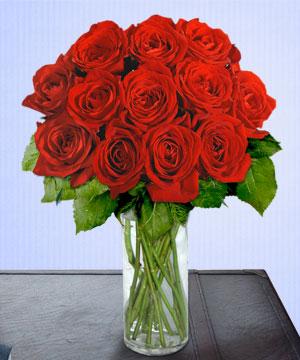 Anneme 12 adet cam içerisinde kirmizi gül  Elazığ çiçek yolla , çiçek gönder , çiçekçi
