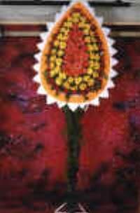 Elazığ çiçek mağazası , çiçekçi adresleri  dügün açilis çiçekleri  Elazığ kaliteli taze ve ucuz çiçekler