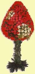 Elazığ çiçek online çiçek siparişi  dügün açilis çiçekleri  Elazığ internetten çiçek satışı