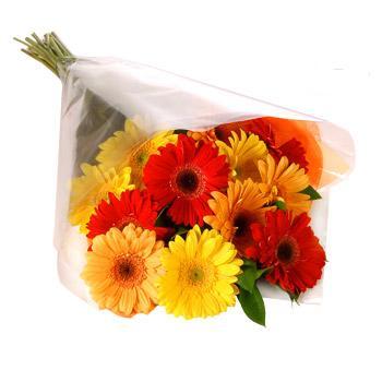 Karisik renklerde gerbera buketi  Elazığ çiçek , çiçekçi , çiçekçilik