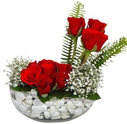 cam içerisinde 9 adet kirmizi gül  Elazığ çiçek gönderme