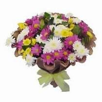 Elazığ çiçek servisi , çiçekçi adresleri  Mevsim kir çiçegi demeti