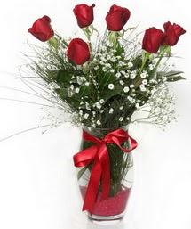 7 adet gülden cam içerisinde güller  Elazığ hediye çiçek yolla
