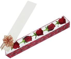 Elazığ İnternetten çiçek siparişi  kutu içerisinde 5 adet kirmizi gül