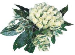 Elazığ çiçek yolla  9 Beyaz gül Özel kisiler için