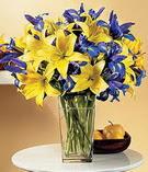 Elazığ çiçekçi mağazası  Lilyum ve mevsim  çiçegi özel