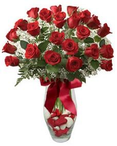 17 adet essiz kalitede kirmizi gül  Elazığ internetten çiçek siparişi