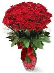 19 adet essiz kalitede kirmizi gül  Elazığ hediye çiçek yolla