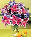Elazığ internetten çiçek siparişi  Sevgi bahçesi Özel  bir tercih