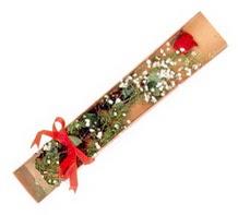 1 adet kirmizi gül  Elazığ çiçek servisi , çiçekçi adresleri