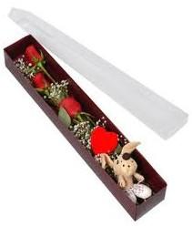 kutu içerisinde 3 adet gül ve oyuncak  Elazığ çiçek , çiçekçi , çiçekçilik