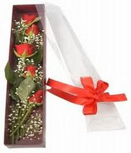 kutu içinde 5 adet kirmizi gül  Elazığ çiçek yolla