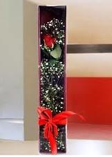 kutu içinde tek kirmizi gül  Elazığ internetten çiçek satışı