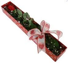 Tek kirmizi gül kutu içerisinde  Elazığ online çiçek gönderme sipariş