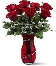 Vazo içinde 8 adet kirmizilar içinde güller  Elazığ çiçek yolla