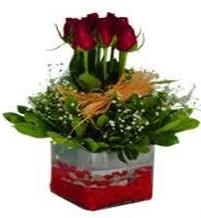 Elazığ çiçek online çiçek siparişi  7 adet mika yada cam vazoda gül tanzimi
