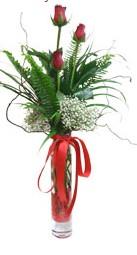 Elazığ çiçek yolla , çiçek gönder , çiçekçi   3 adet kirmizi gül vazo içerisinde