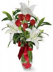 Elazığ çiçek gönderme  5 adet kirmizi gül ve 3 kandil kazablanka