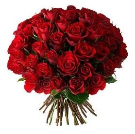 Elazığ kaliteli taze ve ucuz çiçekler  33 adet kırmızı gül buketi