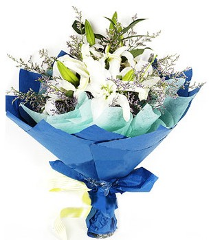 Elazığ çiçekçi mağazası  4 adet dal kazablankadan görsel buket