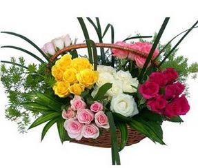 Elazığ güvenli kaliteli hızlı çiçek  35 adet rengarenk güllerden sepet tanzimi