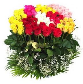 Elazığ internetten çiçek siparişi  51 adet renkli güllerden aranjman tanzimi