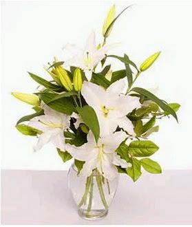 Elazığ çiçek online çiçek siparişi  2 dal cazablanca vazo çiçeği