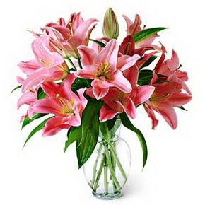 3 dal kazablanka görsel vazosu  Elazığ çiçek yolla
