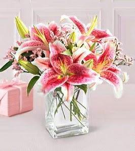 2 dal kazablanka görsel vazosu  Elazığ çiçek yolla , çiçek gönder , çiçekçi