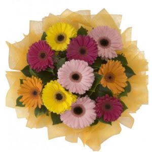 Elazığ 14 şubat sevgililer günü çiçek  11 adet karışık gerbera çiçeği buketi