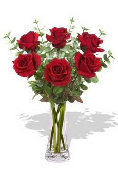 Elazığ online çiçekçi , çiçek siparişi  6 kırmızı gül vazosu