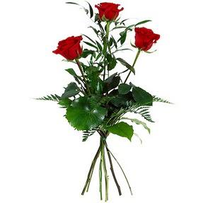Elazığ ucuz çiçek gönder  3 adet kırmızı gülden buket