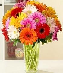 Elazığ çiçekçiler  15 adet gerbera çiçek vazosu