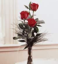Elazığ İnternetten çiçek siparişi  Vazoda 3 adet güzel gül