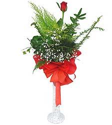 Elazığ çiçekçi mağazası  Cam vazoda masum tek gül