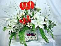 Elazığ internetten çiçek siparişi  Anthurim Kazablanka  gül