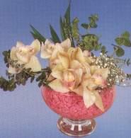 Elazığ internetten çiçek siparişi  Dal orkide kalite bir hediye