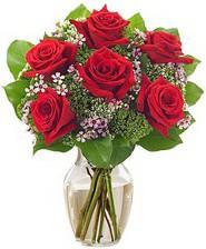 Kız arkadaşıma hediye 6 kırmızı gül  Elazığ çiçek yolla