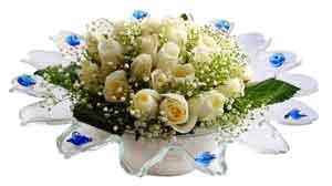 Elazığ internetten çiçek satışı  11 adet Beyaz güller özel cam tanzim