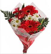 Mevsim çiçeklerinden görsel buket  Elazığ çiçek gönderme sitemiz güvenlidir