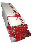 Elazığ çiçek servisi , çiçekçi adresleri  11 adet 1.kalite magnum güller