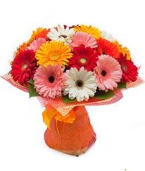 Renkli gerbera buketi  Elazığ çiçekçi mağazası