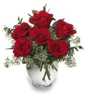 Vazo içerisinde 5 adet kırmızı gül  Elazığ online çiçekçi , çiçek siparişi