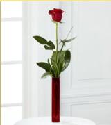 Vazo içerisinde 1 adet kırmızı gül  Elazığ çiçek yolla
