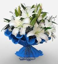 4 dal kazablanka çiçeğinden buket  Elazığ çiçek satışı
