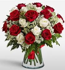Vazoda 12 kırmızı 12 beyaz gül tanzimi  Elazığ ucuz çiçek gönder