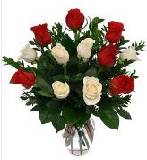 Vazo içerisinde 6 kırmızı 6 beyaz gül  Elazığ yurtiçi ve yurtdışı çiçek siparişi